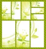 Vector Multicolor Leaf Eco Shiny Banner Stock Vector Image