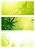 Green Eco Banner Collection Stock Photography