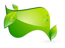 Green Eco Banner. Vitality Green Eco Banner With Leaf and Copyspace Stock Images