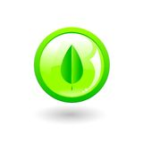 Green eco button. Vector Green ecological glossy button with abstract leaf Royalty Free Stock Photos