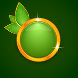 Green eco button with leaves Royalty Free Stock Photos