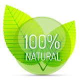 Green eco concept - natural. Green eco concept - 100 percents natural. Vector icon Royalty Free Illustration