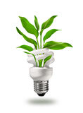 Green eco energy concept Stock Photos