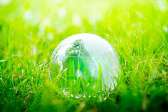 Green & Eco environment, glass globe in the garden Royalty Free Stock Image
