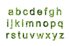 Green eco font Royalty Free Stock Photos