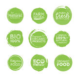 Green Eco Food Labels. Health Headings. Vector Illustration Collection Stock Photos