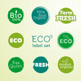 Green Eco Food Labels. Vector Illustration. Collection Royalty Free Illustration