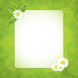 Green eco frame Royalty Free Stock Images