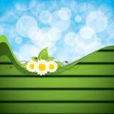 Green eco frame Stock Image