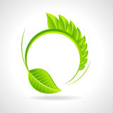 Green eco friendly icon with leaf on circle Stock Photos