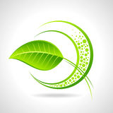 Green eco friendly icon with leaf Stock Image