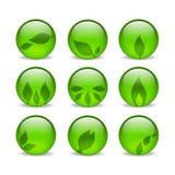 Green eco glass leaf web icons. Set of 9 web symbols with subtle leaf embellishments Royalty Free Stock Image