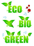Green eco icons Stock Photo