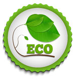 Green ECO Label Stock Images