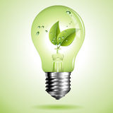 Green eco light bulb with green leaf Royalty Free Stock Image
