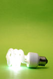 Green Eco Lightbulb Stock Image