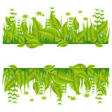Green eco line with leafs stock illustration