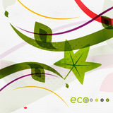 Green eco nature minimal floral concept Stock Photography