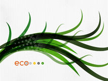 Green eco nature minimal floral concept Royalty Free Stock Images