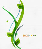 Green eco nature minimal floral concept Royalty Free Stock Image