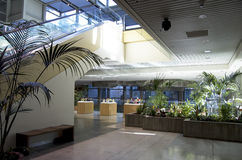 Green eco office building interiors natural light. Office building with nice natural lighting and plants Stock Image