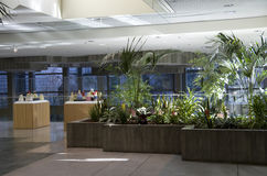 Green eco office building interiors natural light Royalty Free Stock Images