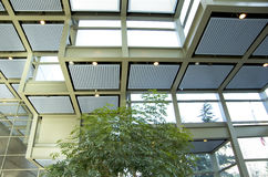 Green eco office building interiors natural light Royalty Free Stock Photography