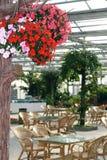 Green eco-restaurant. Stock Photos