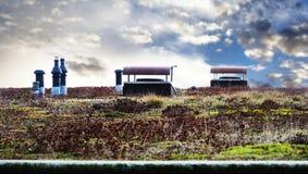 Green eco roof Stock Photo