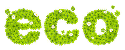 Green eco sign filled with four-leaf clovers and chamomile flowers Royalty Free Stock Images