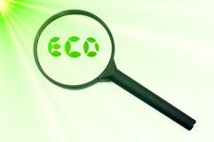 Green eco sign magnifying concentrate or focus Stock Images