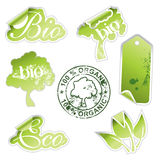 Green eco stickers Royalty Free Stock Photo