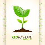 Green eco template Royalty Free Stock Images