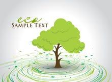 Green eco tree Stock Photo