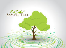 Green eco tree Royalty Free Stock Images