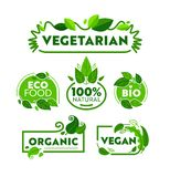 Green Eco Vegetarian Organic Food Icon Banner Set. Vegan Bio Nature Shop Badge Collection for Ecology Healthcare. Wellness Lifestyle Advertising Poster Flat royalty free illustration