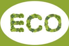 Green eco Royalty Free Stock Image