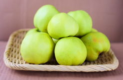 Green ecological apples Royalty Free Stock Photography