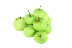 Green ecological grown apple Stock Image
