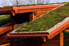Green living roof on wooden building covered with vegetation Royalty Free Stock Photo
