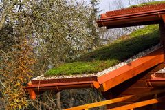 Green living roof on wooden building covered with vegetation Stock Images
