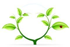 Green ecology Stock Photo