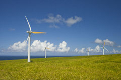 Green ecology, Alternative wind energy sources. Alternative wind energy sources on the hill overlooking the ocean in the background Royalty Free Stock Photos