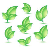 Green ecology concept icons with leaf Stock Images