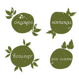 Green ecology label hand drawn and grunge set vector Stock Images