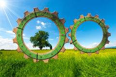 Green Economy - Gears in Countryside. Two wooden gears with green tree in countryside, concept of green economy Royalty Free Stock Image