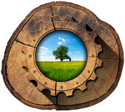 Green Economy - Tree Trunk and Gear Stock Photo