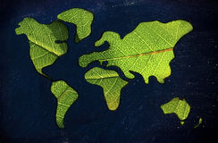 Green economy, world map covered by green leaves. Green economy and sustainable deveolpment, green leaves over continents Royalty Free Stock Images