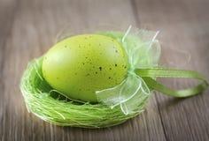 Green egg Stock Image