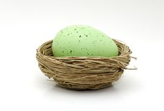 Green Egg Stock Images